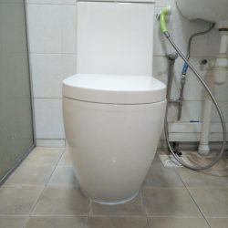 baron toilet bowl installation toilet bowl city singapore condo seng kang