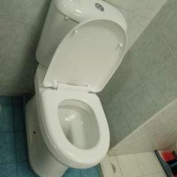 toilet bowl replacement toilet bowl city singapore condo clementi