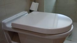Toilet Bowl Replacement in Singapore Condo – Punggol