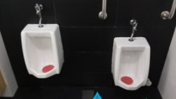 Urinal Installation in Singapore Commercial Building – Jurong West