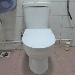 baron toilet bowl installation toilet bowl city singapore hdb jurong west