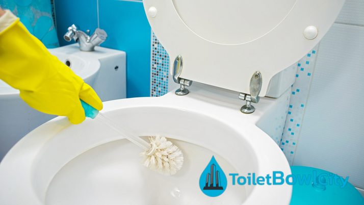 How to clean and maintain your toilet bowl