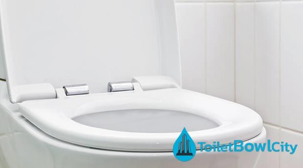 toilet design toilet bowl city singapore