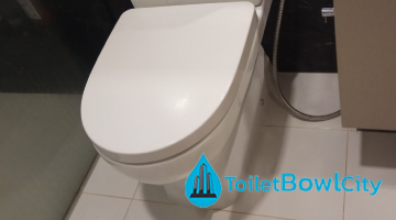 toilet-bowl-installation-toilet-bowl-city-singapore-hdb-tampines-1_wm (1)