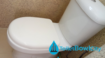 toilet-bowl-replacement-toilet-bowl-city-singapore-condo-tampines_wm (1)